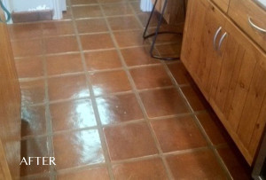 Saltillo Floor Cleaning and Sealing