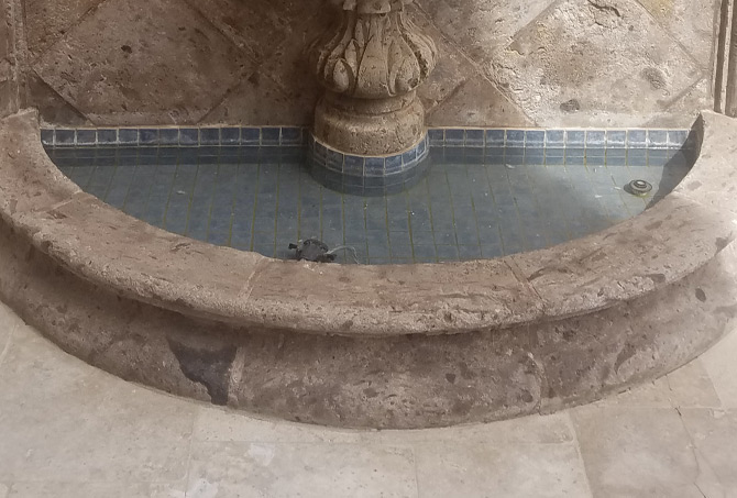 Professional Fountain Cleaning